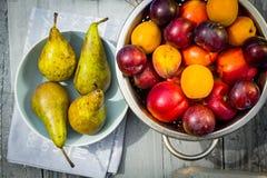 Fruta de piedra en la tabla de madera, visión plana del otoño Fotos de archivo libres de regalías