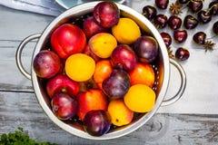 Fruta de piedra en la tabla de madera, visión plana del otoño Fotografía de archivo libre de regalías