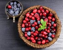 Fruta de queda isolada Foto de Stock Royalty Free
