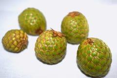 Fruta de Rumbia Imagenes de archivo
