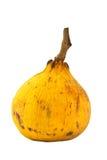 Fruta de Santol Fotografia de Stock Royalty Free