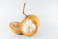 Fruta de Santol Foto de archivo libre de regalías