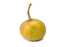 Fruta de Santol aislada Foto de archivo