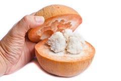 Fruta de Santol aislada en el fondo blanco Imágenes de archivo libres de regalías