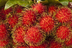 Fruta de Tailândia Imagem de Stock