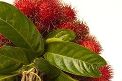 Fruta de Tailandia Imagen de archivo
