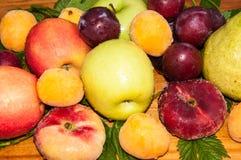 Fruta del árbol frutal fotografía de archivo libre de regalías