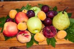 Fruta del árbol frutal imagenes de archivo
