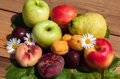 Fruta del árbol frutal, fotos de archivo libres de regalías