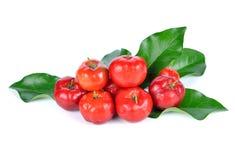 Fruta del Acerola fotos de archivo