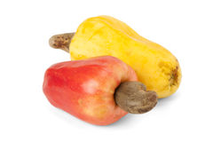 Fruta del anacardo de Caju del brasileño Imagen de archivo