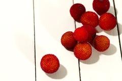 Fruta del Arbutus Imagen de archivo