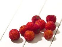 Fruta del Arbutus Fotos de archivo libres de regalías