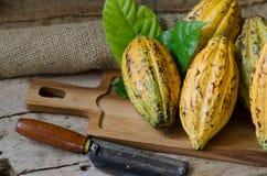 Fruta del cacao, habas crudas del cacao, vaina del cacao en fondo de madera imagen de archivo libre de regalías