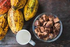 Fruta del cacao y granos de cacao con una taza de cacao caliente imagenes de archivo