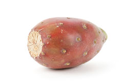 Fruta del cacto Fotografía de archivo libre de regalías