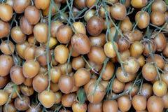 Fruta del chino Wampee foto de archivo