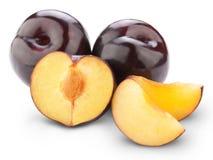 Fruta del ciruelo Imágenes de archivo libres de regalías