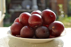 Fruta del ciruelo de cereza. Fotos de archivo libres de regalías