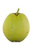 Fruta del coco Imagenes de archivo