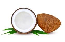 Fruta del coco aislada en blanco imagen de archivo libre de regalías