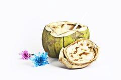 Fruta del coco con la flor Imagen de archivo