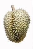 Fruta del Durian Fotografía de archivo