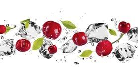 Fruta del hielo Foto de archivo libre de regalías