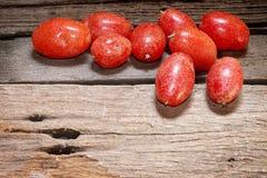 Fruta del latifolia del Elaeagnus Imágenes de archivo libres de regalías
