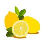 Fruta del limón Imagen de archivo