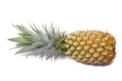 Fruta del local de la piña Foto de archivo libre de regalías