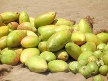 Fruta del mango fotografía de archivo