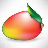 Fruta del mango con la hoja Imagenes de archivo