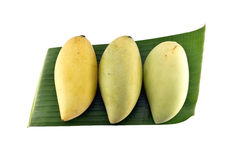 Fruta del mango con la hoja del plátano aislada en el fondo blanco Fotografía de archivo