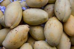 Fruta del mango para el comercio, venta, diseño imagen de archivo