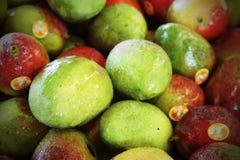 Fruta del mango para la venta en el mercado Fotos de archivo libres de regalías