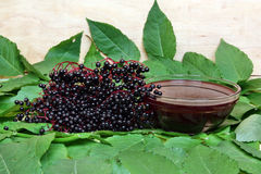 Fruta del nigra del Sambucus imagenes de archivo