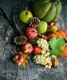 Fruta del otoño Fotografía de archivo libre de regalías