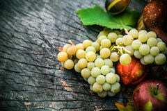 Fruta del otoño Imagen de archivo libre de regalías