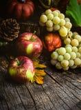 Fruta del otoño Fotografía de archivo