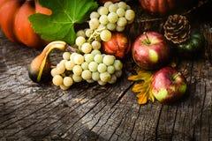 Fruta del otoño Fotos de archivo libres de regalías