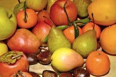 Fruta del otoño, aún vida Foto de archivo libre de regalías