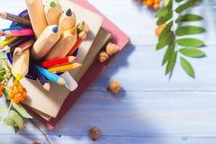 Fruta del otoño de la escuela de la parte posterior del concepto de los libros de los lápices Fotografía de archivo libre de regalías