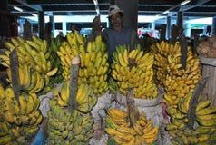 Fruta del plátano imagen de archivo libre de regalías