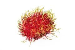 Fruta del Rambutan Fotos de archivo