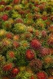 Fruta del Rambutan de Tailandia Imagen de archivo