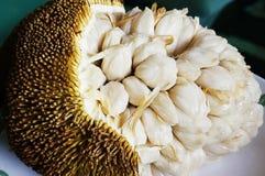 Fruta del roble de Marang o del johey Fotos de archivo libres de regalías