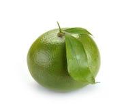 Fruta del sweety de la fruta cítrica con las hojas Fotografía de archivo libre de regalías