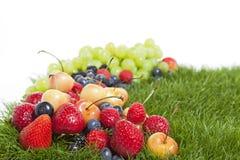 Fruta del verano Imagen de archivo libre de regalías