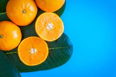 Fruta del verano de la naranja con la mesa en fondo del azul de las placas T Fotos de archivo